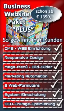 Angebot Business Paket Plus
